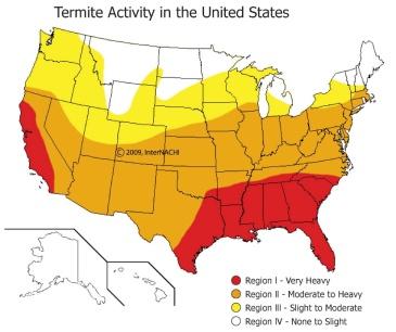 termite-activity-us